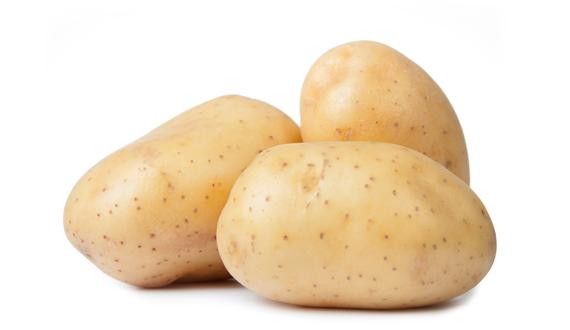 Van Woerden Flevo - biologische aardappel