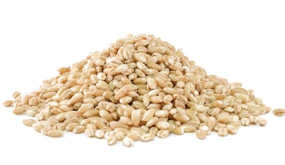 Van Woerden Flevo - biologisch graan