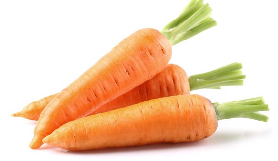 Van Woerden Flevo - biologische wortel